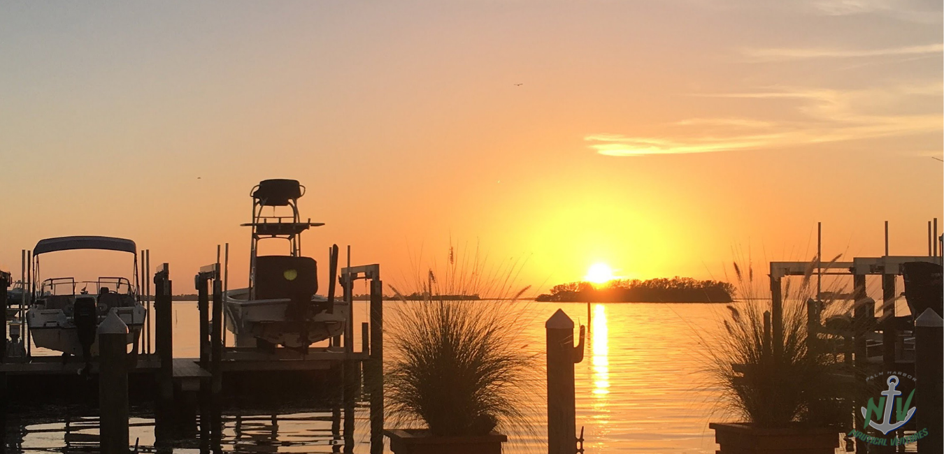 Take a Luxury Sunset Cruise on the West Coast of Florida
